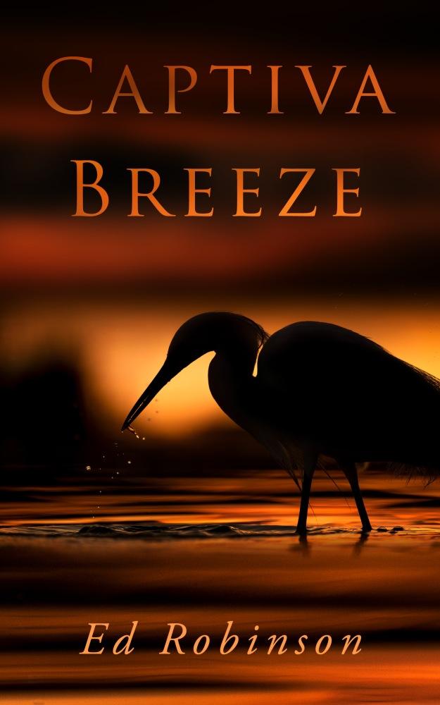 Ebook - Captiva Breeze 01
